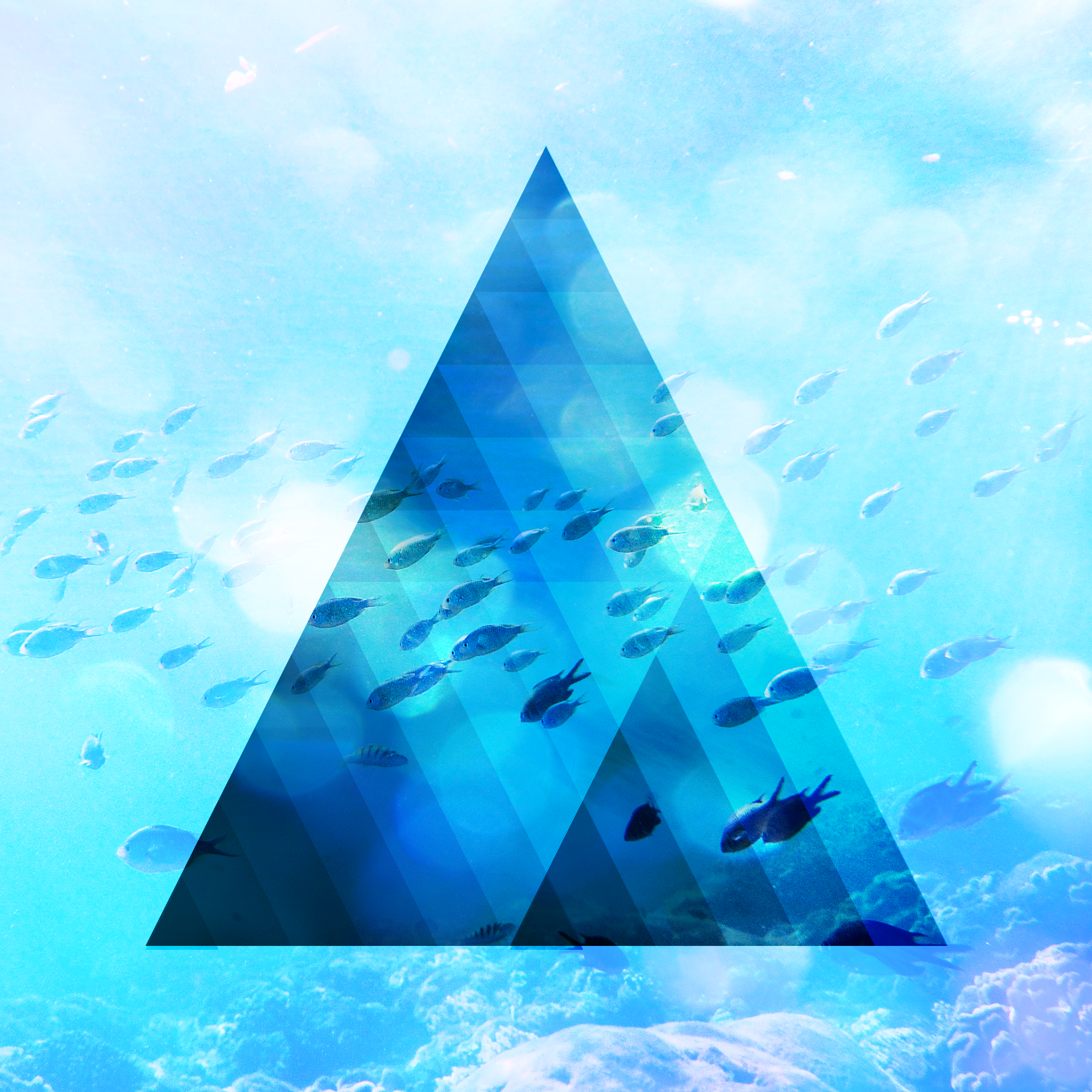 TRIANGLE WATER