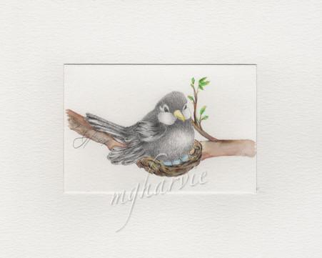 nestting looks good on you.jpg