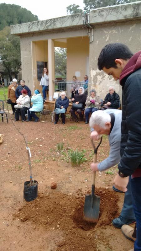 Anatoli digging hole for the tree