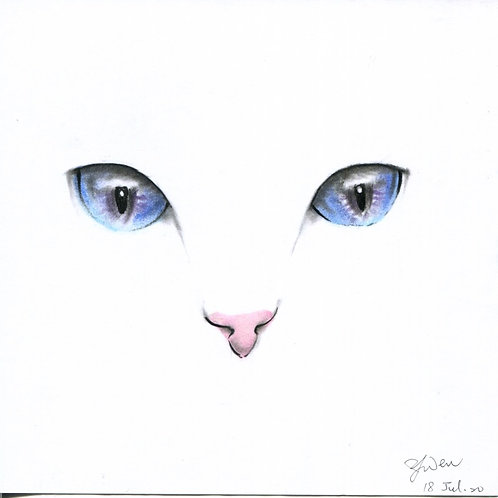 Cat Eyes By Teacher Kuo Yun Wen