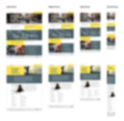 BAL website responsive design