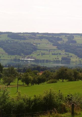 Panorama Feld.jpg