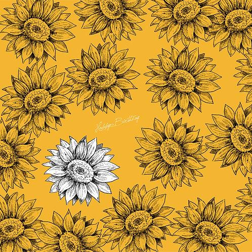 ひまわり-Sunflower【7月8月の花】