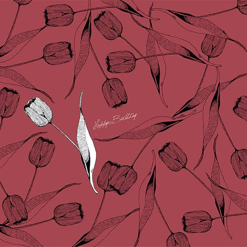 チューリップ-Tulip【4月5月の花】