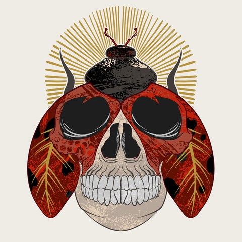 Textures, Ladybugs and Skulls