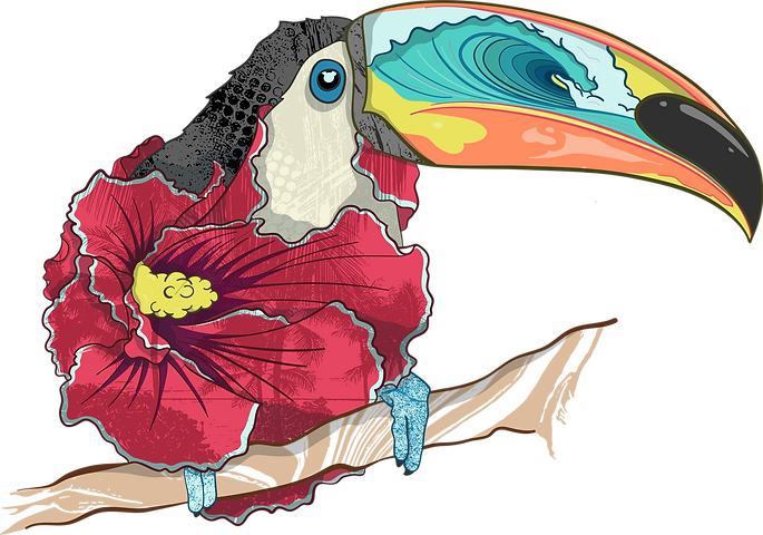 Toucan Illustration.png