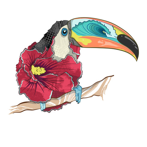 Texture and the Toucan