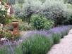 The Perfect Garden Design-The basics.