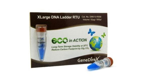 GD XLarge DNA Ladder RTU