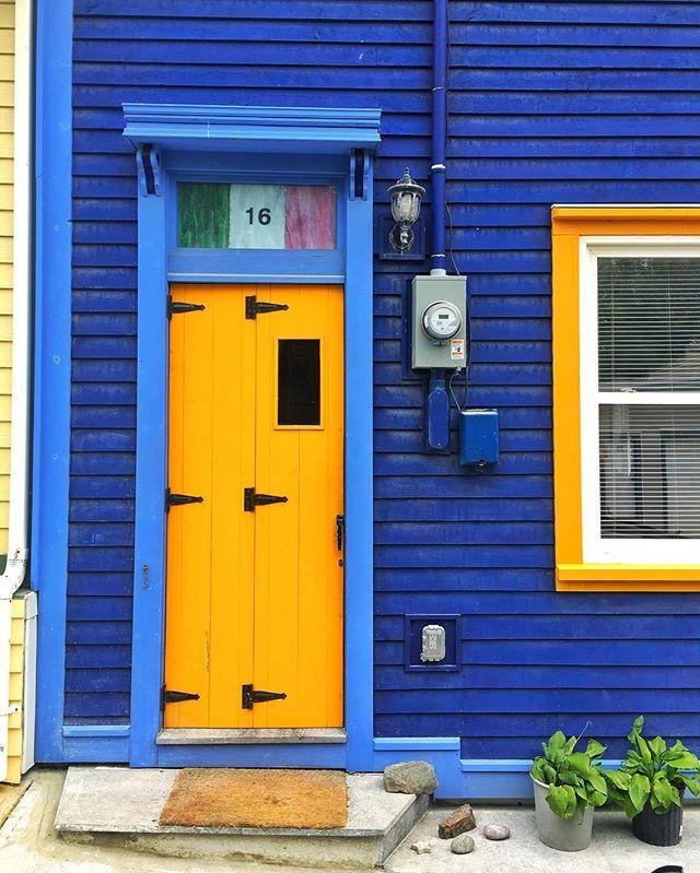 Vivid #colors #frontdoor #stjohns