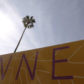 Acreditados en Cannes, otra vez.