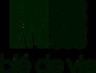 logo-bdv-color_edited.png