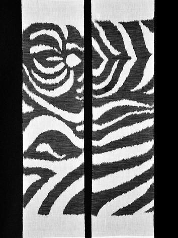 zebra1_45x180cm.jpg