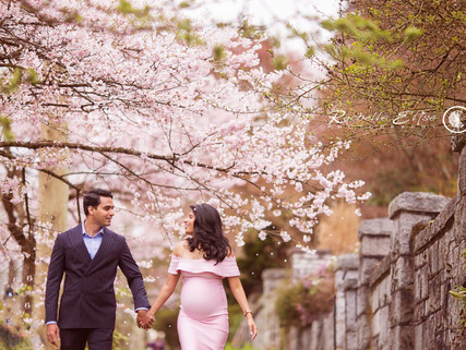 Vancouver Maternity session in the Cherry Blossoms