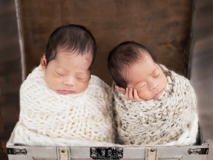 Newborn Photography natural light Vancouver BC Twins with Rochelle Elise Photography