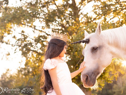 Vancouver and Fraser Valley Unicorn Session with Vancouver Family and Child Photographer Rochelle El