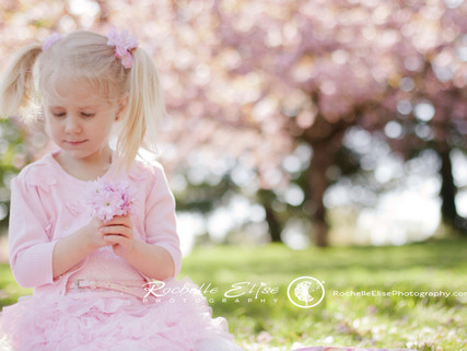 My sweet niece in the cherry blossoms: Rochelle Elise Photography Family Photography Cherry Blossom