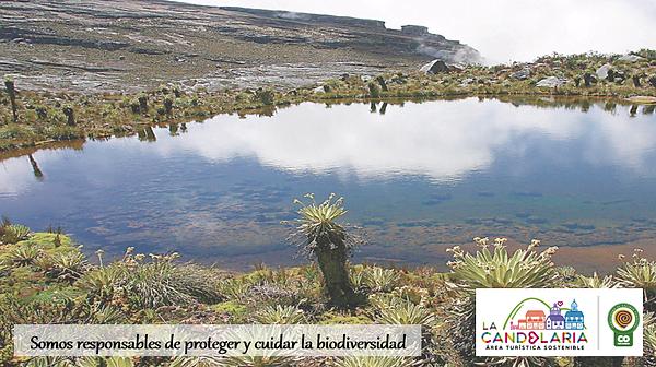 Biodiversidad.png