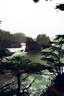 Cape Flattery- Most NW tip of continental US