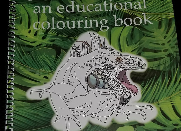 Colouring Book - Lizards an Educational Colouring Book