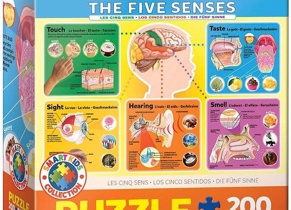 Puzzle 200 - The Five Senses
