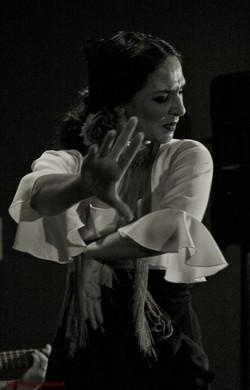 Photo by Antonio Gamboa