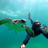 Snorkeling%20whith%20turtlles%20Mandy_Mo