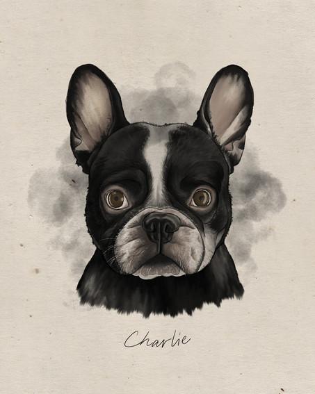 pet portrait sample.JPG
