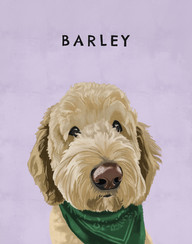 BARLEY copy.jpg