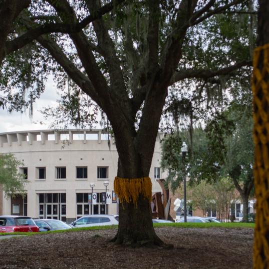 yellow ribbon - 11.2.19 -0775.jpg