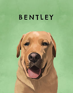 BENTLEY_HP.jpg