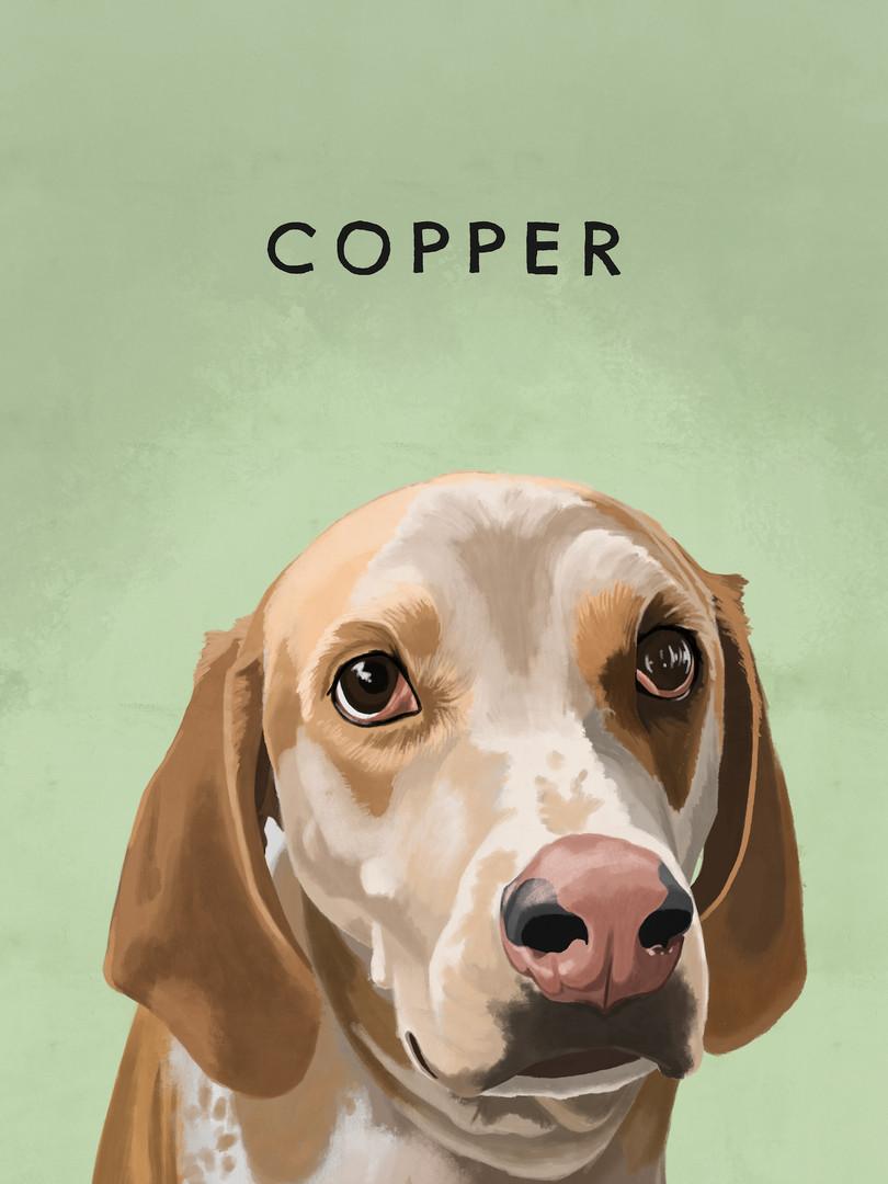 COPPER copy.jpg