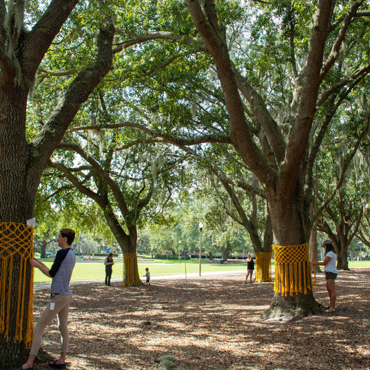 yellow ribbon - 11.2.19 -0598.jpg