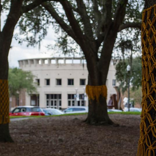 yellow ribbon - 11.2.19 -0773.jpg