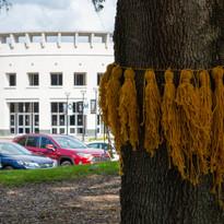 yellow ribbon - 11.2.19 -0691.jpg