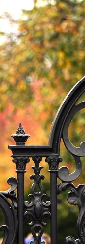 shutterstock_699416635.jpg