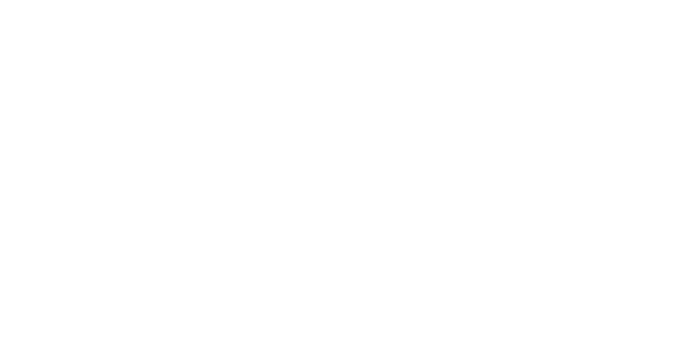 smart culture logo 4 copy.png