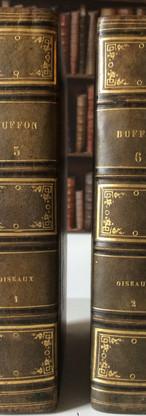 Oeuvres complètes de Buffon, Dauberton et Cuvier,