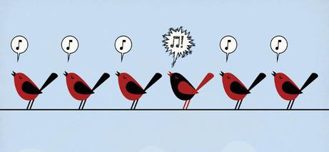 oiseaux_petite-1.jpg