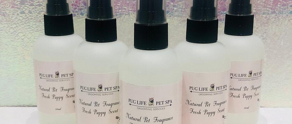 Pug Life Fragrance