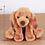 Thumbnail: MINGLER dachshund