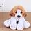 Thumbnail: MINGLER beagle
