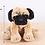Thumbnail: MINGLER pug