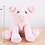 Thumbnail: MINGLER pig