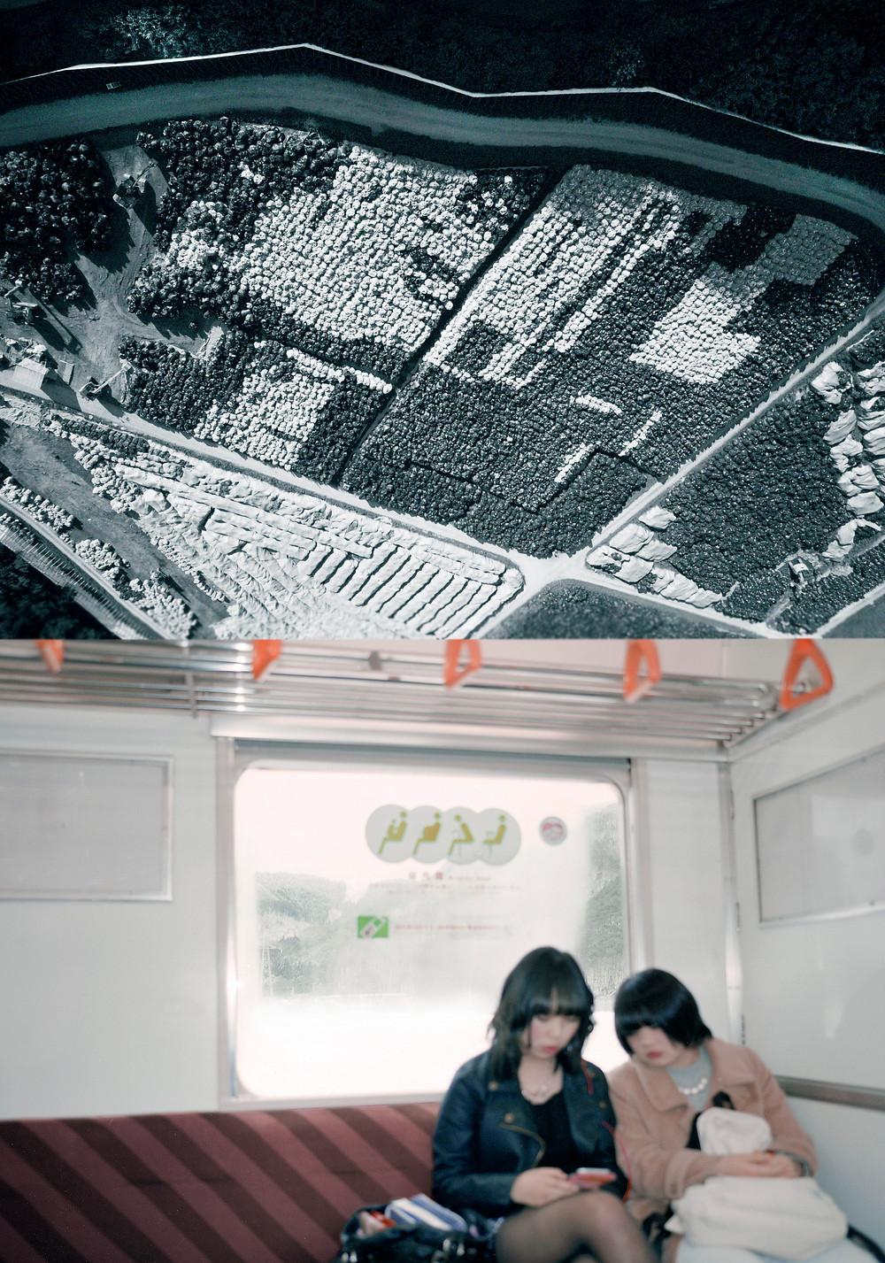 震災後、  6年に渡り撮り続けた故郷、福島の写真を展示します。  カラー、モノクロ約50点。  2017年3月28日(火)~4月10日(月)  ◆新宿Nikon Salon  東京都新宿区西新宿1-6-1 新宿エルタワー28F  →URL  2017年4月27日(木)~5月3日(水)  ◆大阪Nikon Salon  大阪府大阪市北区梅田2-2-2  ヒルトンプラザウエスト・オフィスタワー13F  →URL  新宿・大阪いずれも10:30~18:30(最終日は15:00まで)  会期中無休