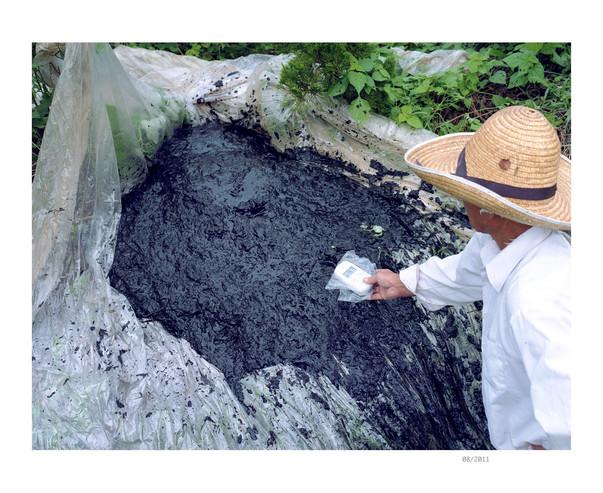 Planet Fukushima23.jpg