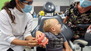 When should I start brushing my child's teeth?