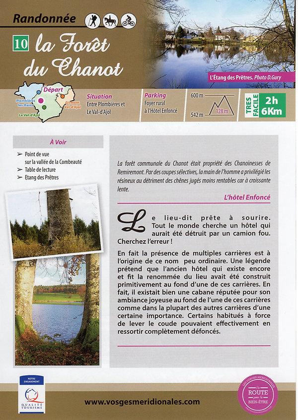 10 la forêt du Chanot a.jpg
