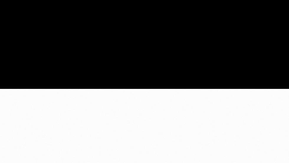 Dégradé blanc.png