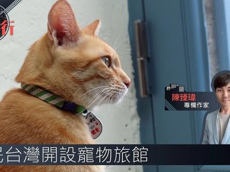 全球樓行.專欄︱移民台灣開設寵物旅館